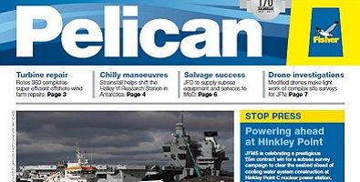 Pelican summer newsletter 395 x 200.jpg
