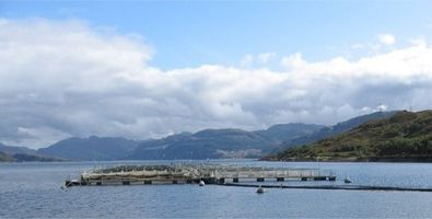 Scottish fish farm 395 x 200 (2).jpg